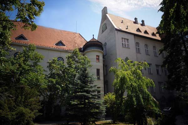 Институт неврологии Будапешт
